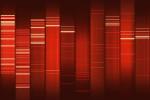 Mr. Miata Dot Net's DNA