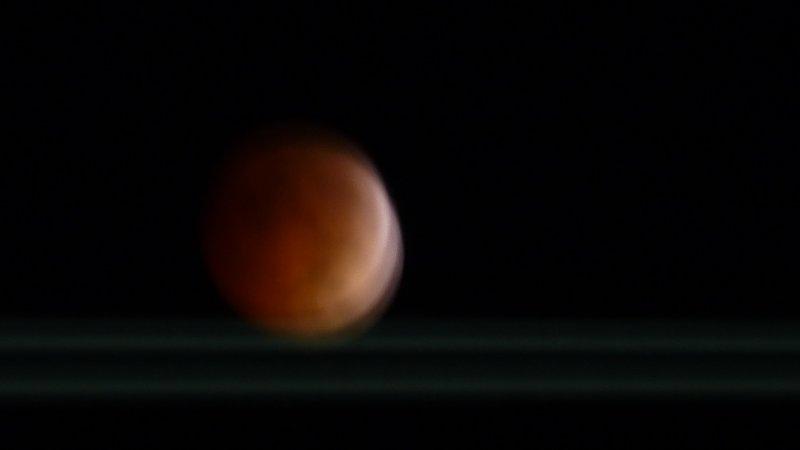Bloddy Moon