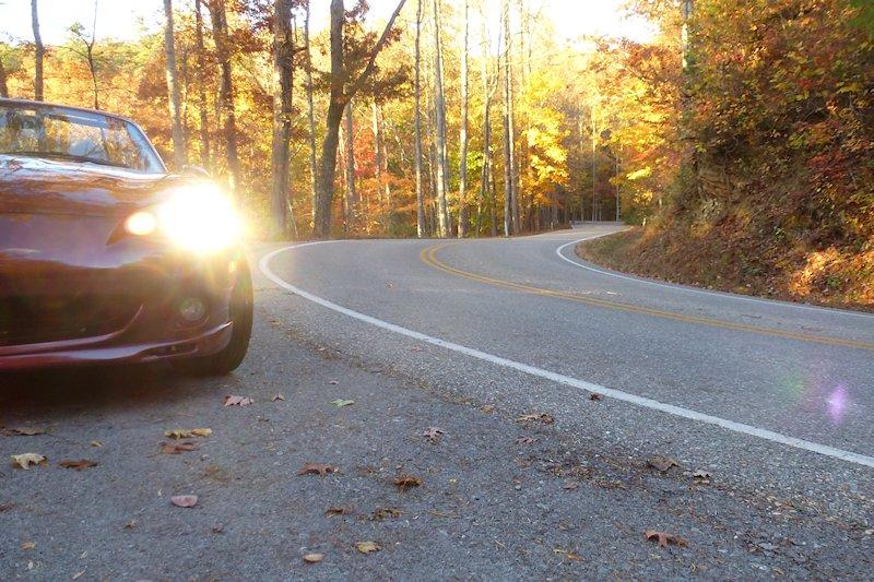 Fall at the Gap