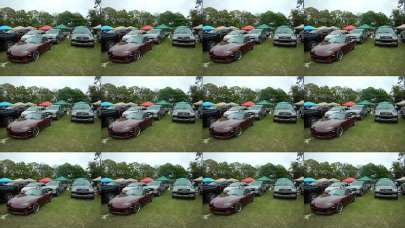 12 Multi-shot