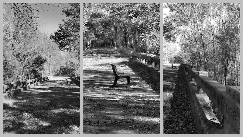 301-triptych