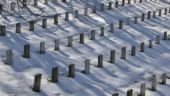 Arlington Cemetery 2
