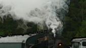 Train Arrives II