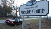 County - Allendale