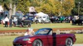 Car Show - Model T's To Olar Festival
