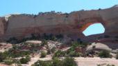 Wilsons Arch