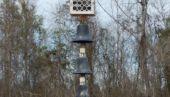 Destination - Bell Tower