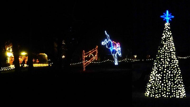 Hopeland Gardens Christmas Lights.Christmas In Hopeland Gardens Life Of Brian